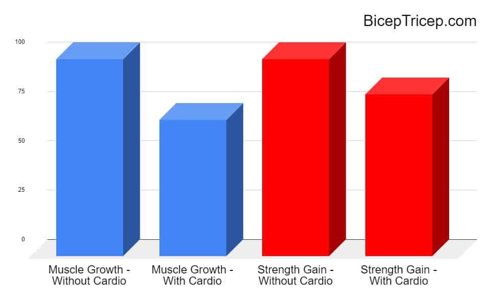 Muscle growth with cardio